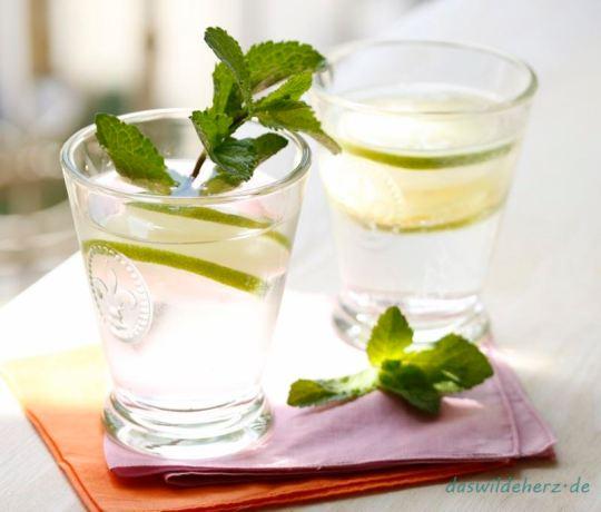 Eisscheiben_Drink